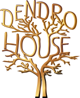 Dendro.House Image